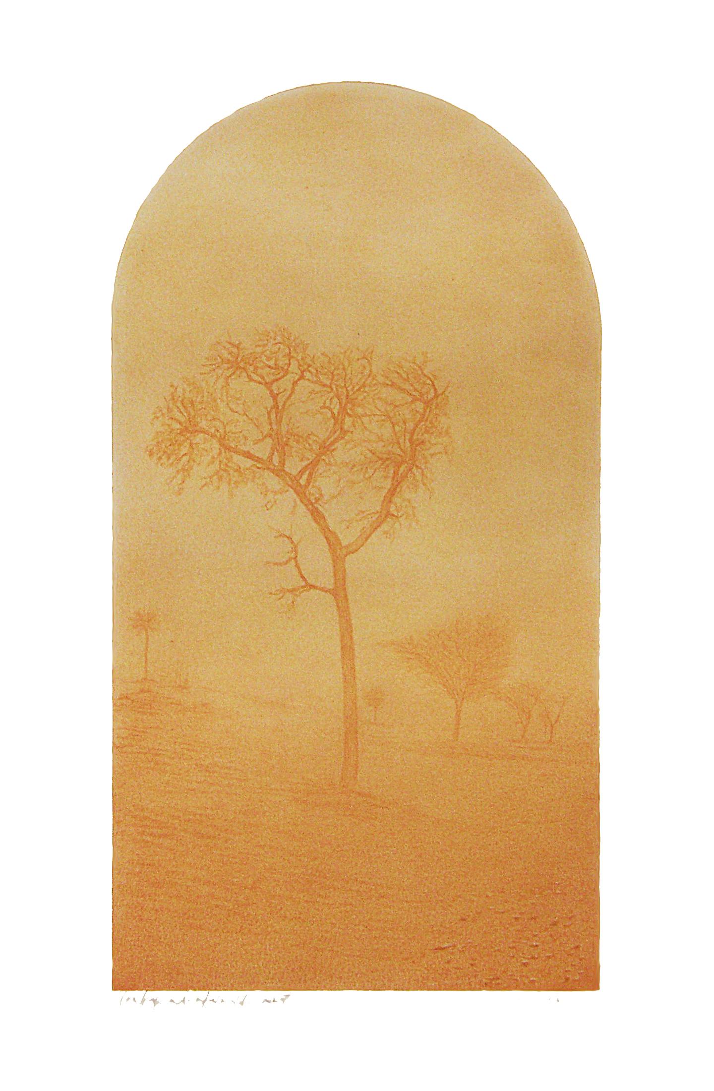 Una tarde a la entrada del desierto, lápiz de color sobre papel.